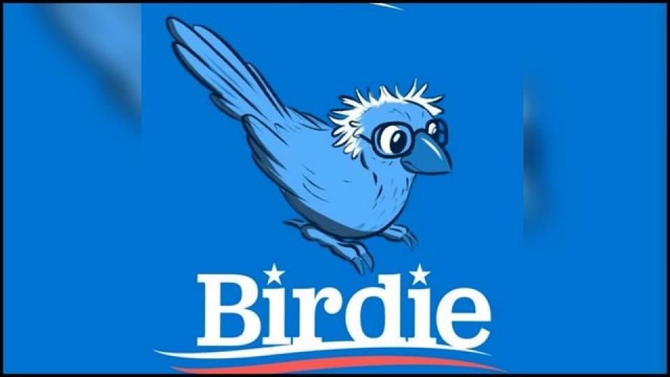 top-10-birdie-sanders-bernie-memes